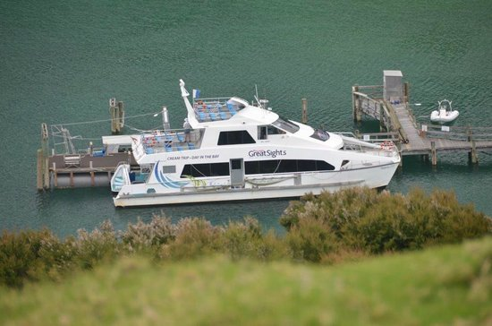 Fullers GreatSights Bay of Islands Day Tours : Boat from Lunch Lookout