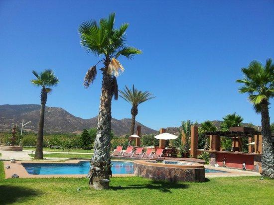 Hotel Boutique Valle de Guadalupe: Vista de jardines y alberca