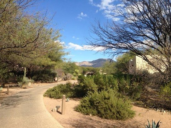 Miraval Arizona Resort & Spa : wandering along the peaceful paths