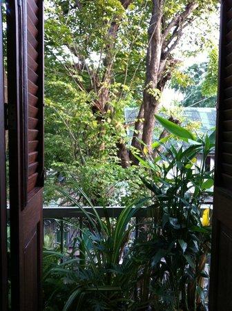 The Asadang: バスルームからのグリーン