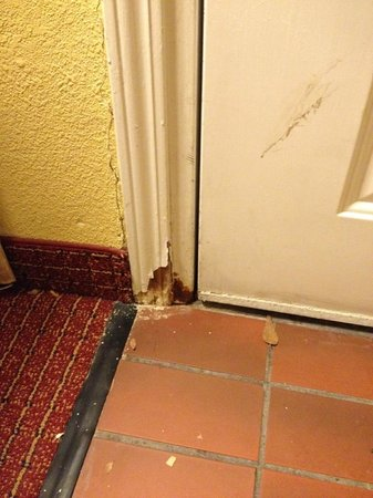 Hawthorn Suites by Wyndham Columbus North : bottom of room entrance doorway