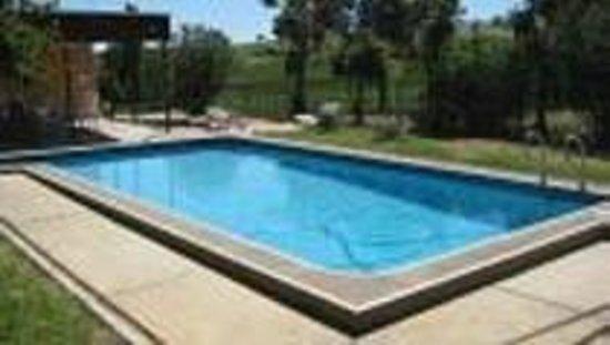 Angaston Vineyards Motel: Pool