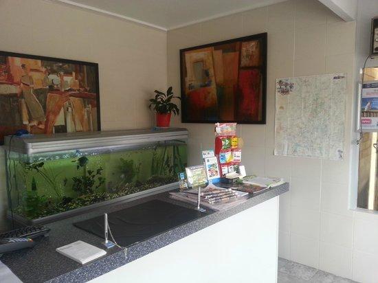 Angaston Vineyards Motel: Reception