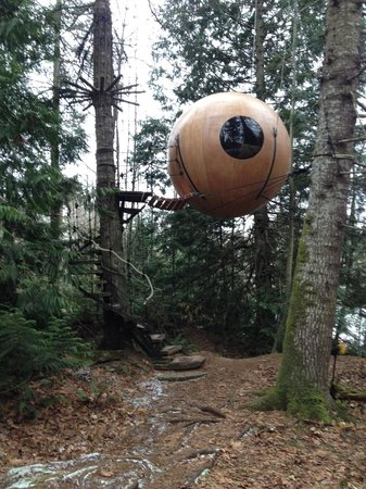 Free Spirit Spheres : Our home for two nights!
