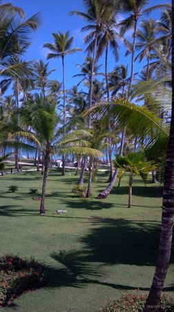 Barcelo Bavaro Beach - Adults Only: Corner 2nd floor room view to beach