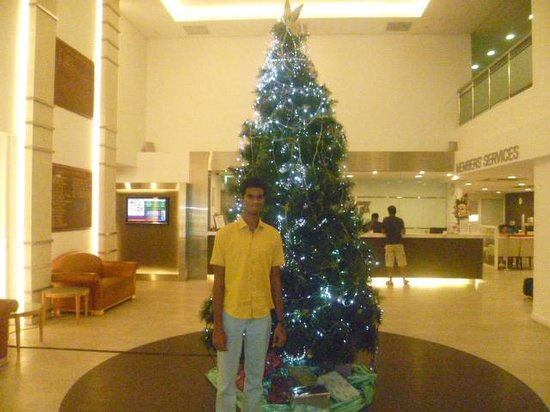 YMCA One Orchard: Christmas tree welcomes you