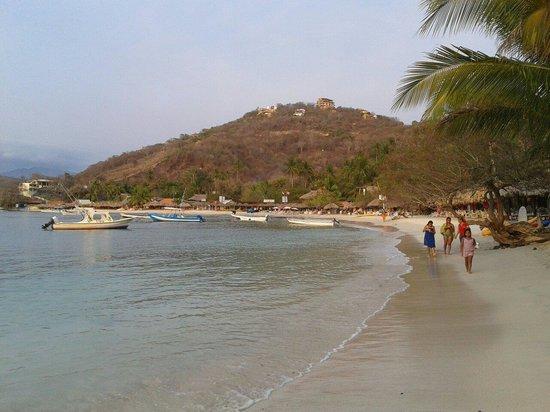 Playa Las Gatas: Las gatas
