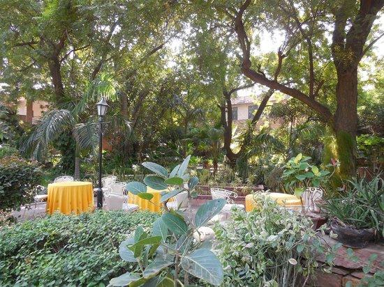 Devi Bhawan : Hotel gardens