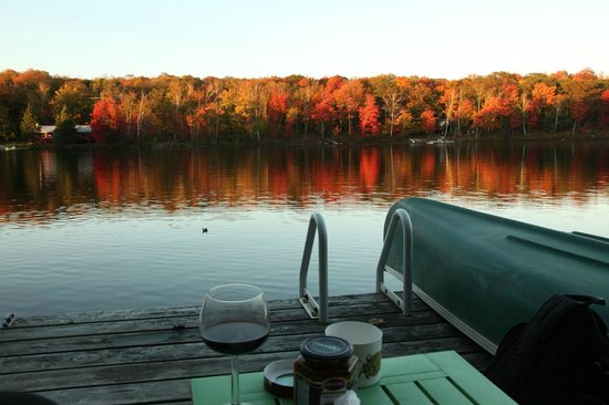 Lioness Lake Bed & Breakfast: View from the dock