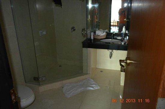 Indra Regent Hotel : Bathroom in 1341