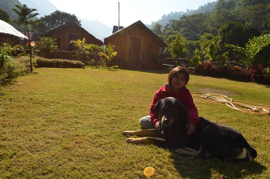 Him River Resort: the hut, the lawn and the mountains