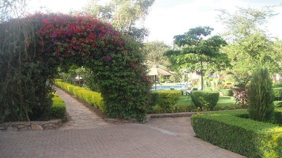 Country Lodge : grounds