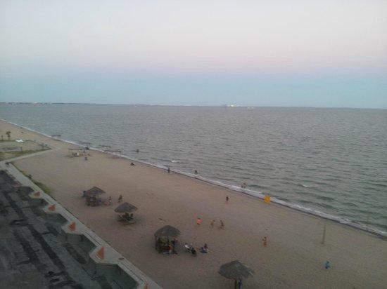Radisson Hotel Corpus Christi Beach: View of the corpus christi beach from my room!