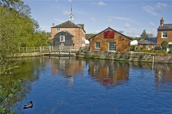 Whitchurch Silk Mill: Duck pond