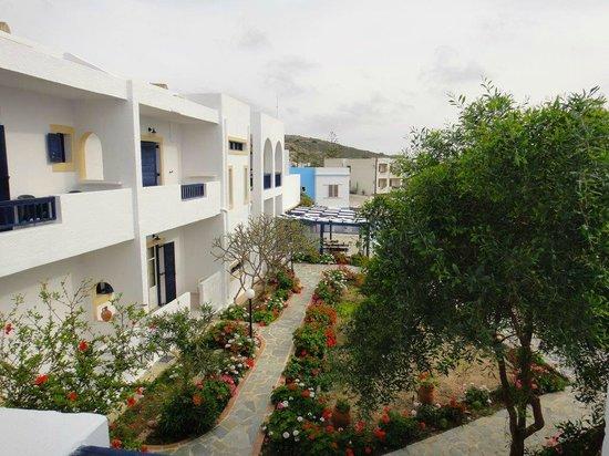 Popi Studios: Blick vom Balkon in den Innenhof der Hotelanlage (der Pool ist hinter dem Baum)