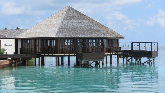 Lily Beach Resort & Spa: Restaurant Tamarind