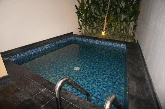 Park Regis Kuta Bali : Plunge pool