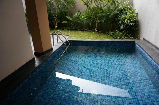 Park Regis Kuta Bali : Rm105 plunge pool