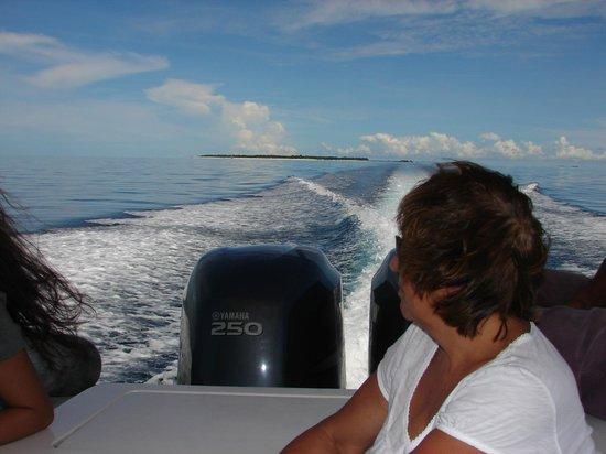 Pom Pom Island Resort & Spa: Bye-bye paradise