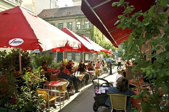 Strozzi Cafe