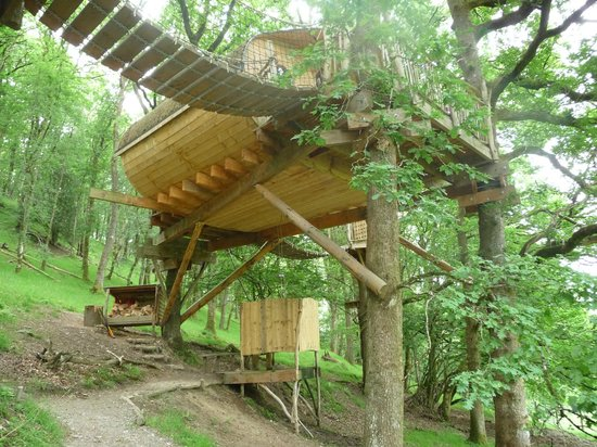 View picture of living room treehouses machynlleth for 8 living room tree houses powys