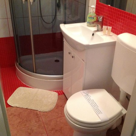 Willa Albatros : Bathroom with shower cubicle
