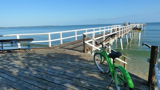 Beach n Cruisers Unique Bike Hire: Torquay Beach Boardwalk
