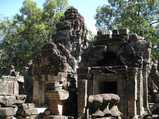 Ruins in Ta Som