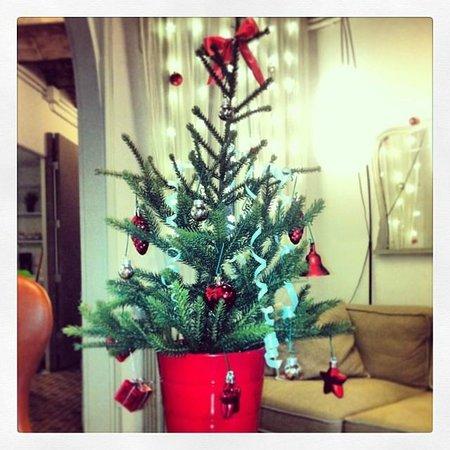 Primavera Hostel : Christmas