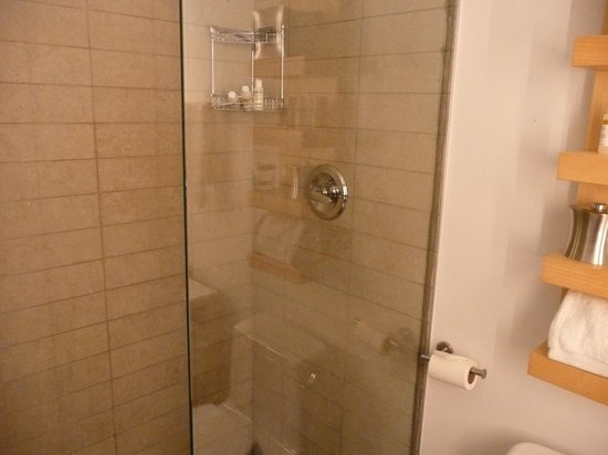 Duane Street Hotel: great shower