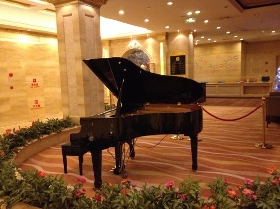 Riverview Hotel: Pianoforte automatico