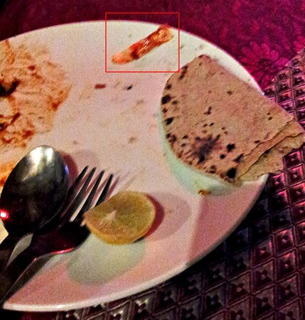 Bamboori Treat: Small plastic piece in gravy marked in red