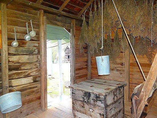 Horne Creek Living Historical Farm : well house