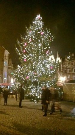 Grote Markt van Antwerpen: Kerstboom