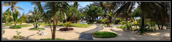 Barra Beach Club: Hotel gardens