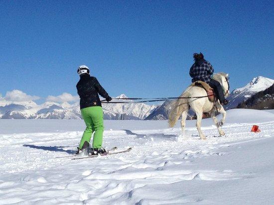 Ski Joëring