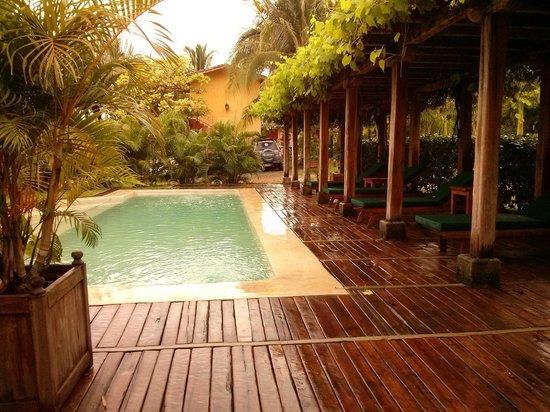 Hotel Villa Romana: the small pool