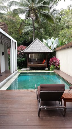The Samaya Bali Ubud: Pool