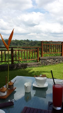 The Samaya Bali Ubud: View from The Scene restaurant