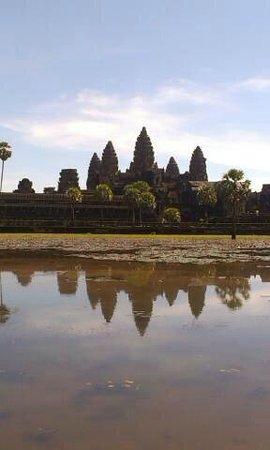 Buffalo Tours: Siem Reap, Angkor Wat