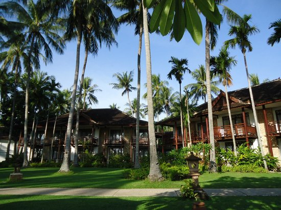 Holiday Resort Lombok : healthy green