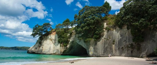 Cathedral Cove Kayak Tours : Cathedral Cove