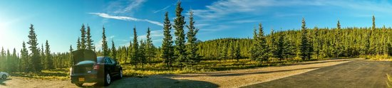 White Moose Lodge: Beautiful rustic view from the room