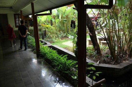 Rumah Ebo: fish pond