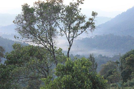 Blu Haze Resort & Spa : Misty out there...
