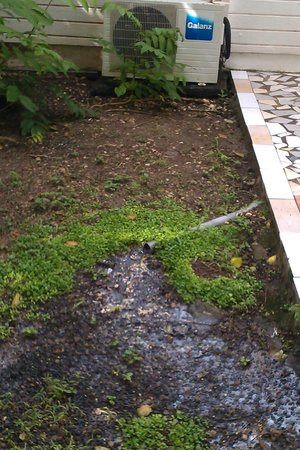La Rose du Brésil : Écoulement des eaux usées dans le jardin