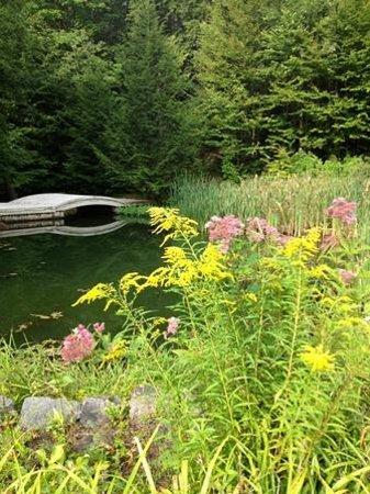 Friends Lake Inn: Pond & Garden
