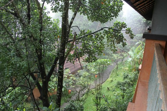 ABAD Green Forest Resort: View from Balcony