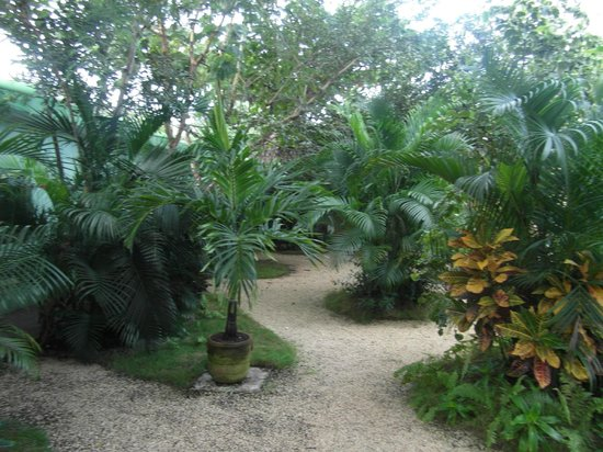 Pacha Tulum : le jardin