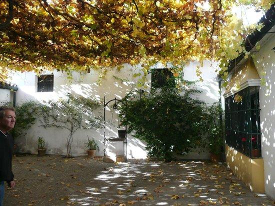 Toma & Coe: Entrance to the Sherry Bodegas